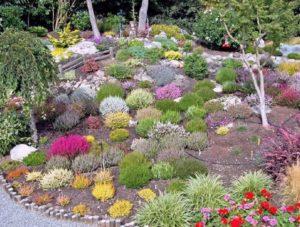 Вересковый сад. Основные правила и приемы создания