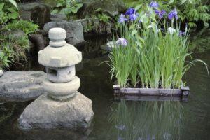 Плавающие клумбы. Как сделать миниатюрный сад на воде своими руками