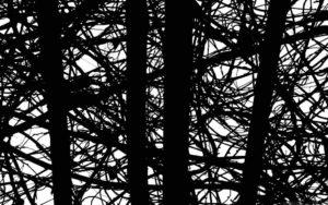 Черные полосы от проводов на обоях