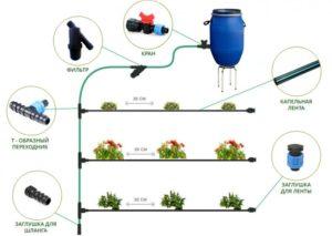 Как соорудить капельный полив на участке своими руками. Преимущества такого варианта полива. Необходимые инструменты и материалы для изготовления капельного полива