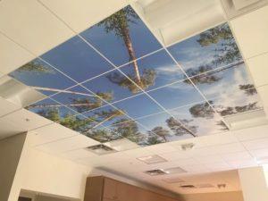 Виды потолочных покрытий
