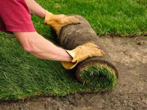 Демонтаж старого газона своими руками
