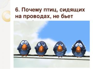Почему птиц не бьет током, когда они сидят на проводах?