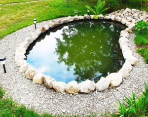 Строительство водоема на даче. Пруд на даче своими руками